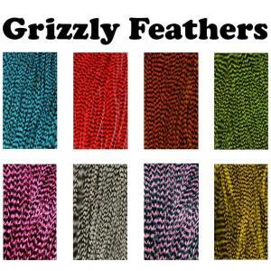 Grizzly Feathers